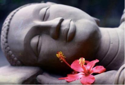 Therapeutic Yoga with Catherine Reid