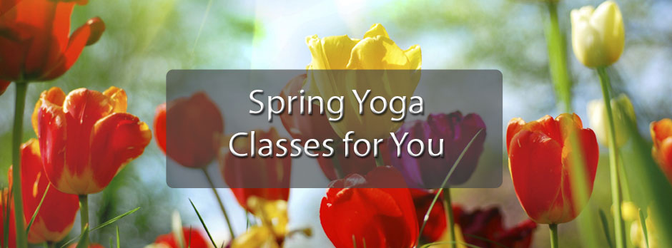 2015 Spring Class Schedule