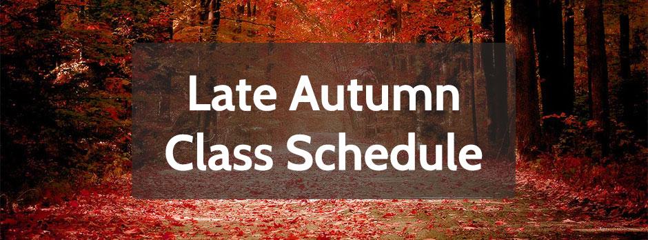 Late 2015 Autumn Schedule