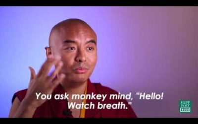 Meditation and the Monkey Mind