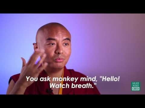 Meditation and the Monkey Mind